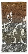 Australian Red Kangaroos Beach Towel