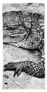 Australian Shy Crocodile  Beach Towel