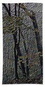 Autumn 2015 Panorama In The Woods Pa 01 Beach Towel