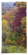 Autumn Arrives In Brown County - D010020 Beach Towel