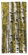 Autumn Aspens Beach Towel by Adam Romanowicz