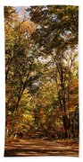 Autumn At Audubon Beach Towel