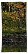 Autumn At Wrights Pond Beach Towel