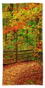 Autumn Bend - Allaire State Park Beach Towel