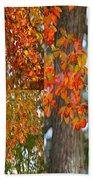 Autumn Collage Beach Towel