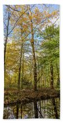 Autumn Color Reflections Beach Towel