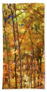 Autumn Colored Beach Towel