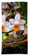 Autumn Colored Orchids Beach Towel