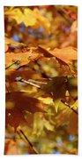 Autumn Colors 3  Beach Towel