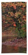 Autumn Colors By The Pond Beach Towel