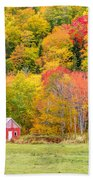 Autumn Colors Near Lake Ainslie  Beach Towel