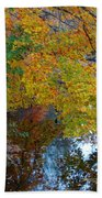 Autumn Colors Of Reflection Beach Towel