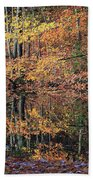 Autumn Colors Reflect Beach Towel