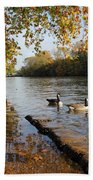 Autumn Colours At Sunbury On Thames Surrey Uk Beach Towel