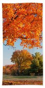 Autumn Dawn Beach Towel