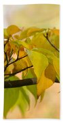 Autumn Day  Beach Towel