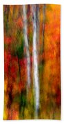 Autumn Dreams Beach Towel