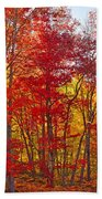 Autumn Experience Beach Towel