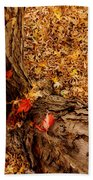 Autumn Fall  Dream Beach Towel