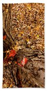 Autumn Fall Beach Towel