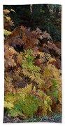 Autumn Ferns Beach Towel