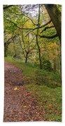 Autumn Forest Path - Beach Towel