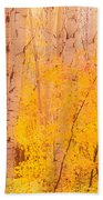 Autumn Forest Wbirch Trees Canada Beach Towel