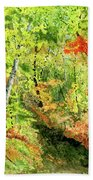 Autumn Fun Beach Towel