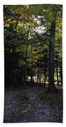 Autumn Glen Beach Towel
