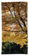 Autumn Glow Beach Towel