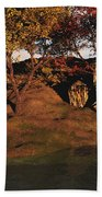 Autumn Grove Beach Towel