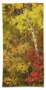 Autumn Impressions Beach Sheet