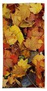 Autumn In Canada Beach Towel