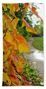 Autumn In Ellenberger Beach Towel