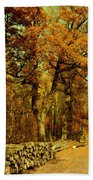 Autumn In Forest Beach Towel