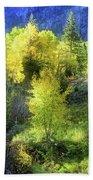 Autumn In Ophir - Colorado - Aspens Beach Sheet