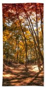 Autumn In The Dunes Beach Towel