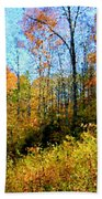 Autumn In The Tennessee Hills Beach Towel