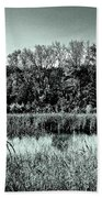 Autumn In The Wetlands - Black And White Beach Towel
