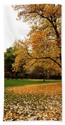 Autumn In Turin, Italy Beach Towel