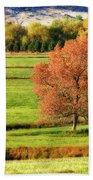 Autumn Landscape Dream Beach Towel by James BO  Insogna