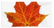 Autumn Leaf 3 Beach Towel