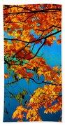 Autumn Leaves 7 Beach Towel