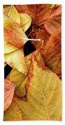 Autumn Leaves Beach Towel by Carlos Caetano