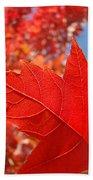Autumn Leaves Fall Art Red Orange Leaves Blue Sky Baslee Troutman Beach Towel
