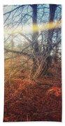 Autumn Light Beach Sheet
