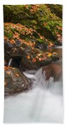Autumn Litter Beach Towel