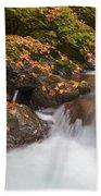 Autumn Litter Beach Sheet