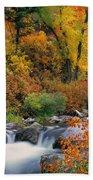 Autumn Magic Beach Towel