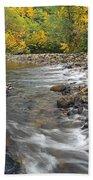 Autumn Meander Beach Towel